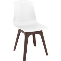 Krzesło ALLEGRA PP brązowe / lśniące białe